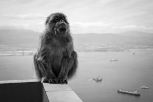 6 - Gibraltar (86)