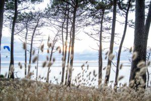 37 - Camping Pyla-sur-mer (45)